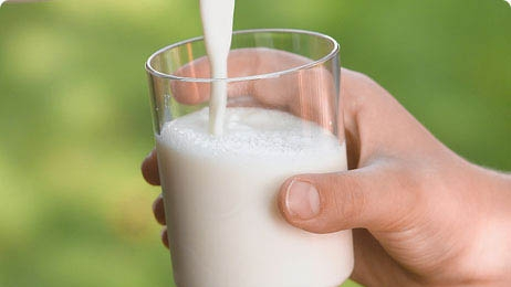 Importance of Dairy